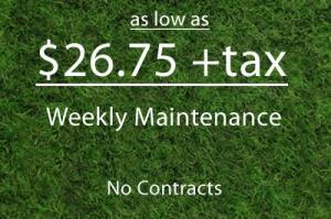 weekly maintenance