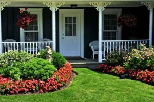 landscaping advice