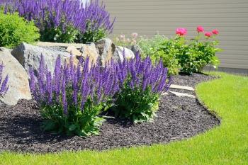 prosper landscaping services