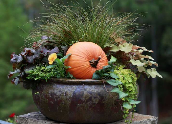 Fall Landscaping Ideas Part - 30: Fall Landscaping Ideas For Front Yards