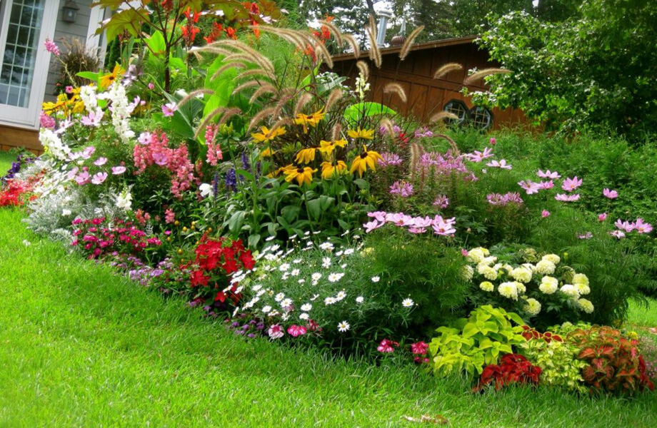 fall landscaping ideas plant varieties
