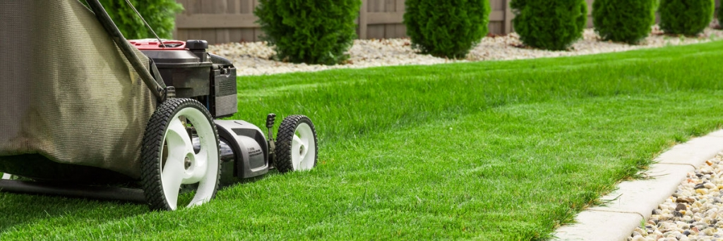 plano lawn mowing service green grass
