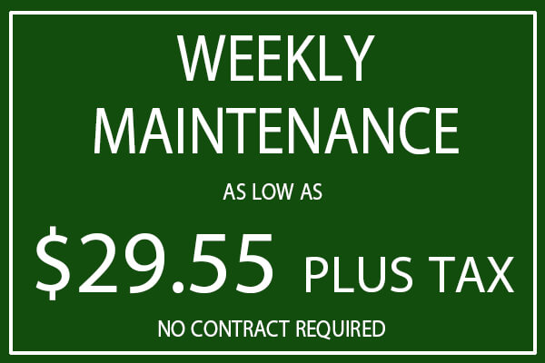 weekly lawn maintenance price for mowing