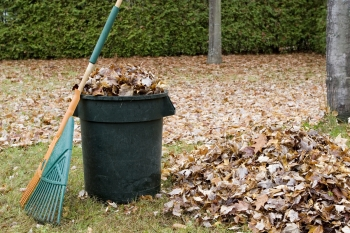 fall leaf clean up tools