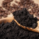 Used Coffee Grounds in Garden Soil