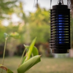 Backyard Bug Zappers: Pest Control Options