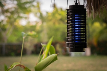 backyard bug zapper