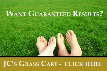 grass care weed control