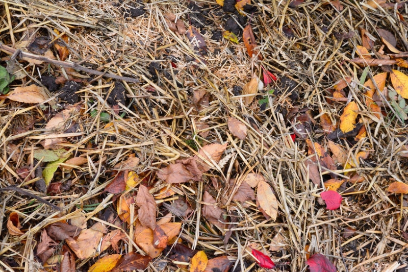 Straw Mulch Mixture