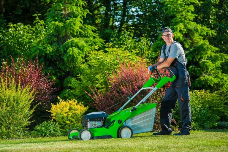 lawn mowing plano tx