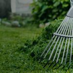 Fall Lawn Care: Why Seasonal Cleaning is Important