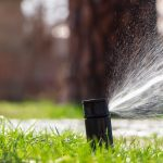 How to Take Care of Your Lawn in the Summer