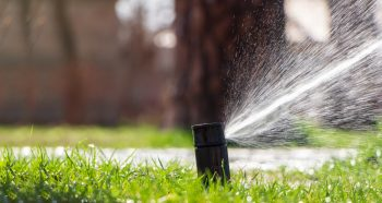 close-up of sprinkler head on green lawn