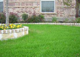 Stone Work & Fertilization Weed Control Plan