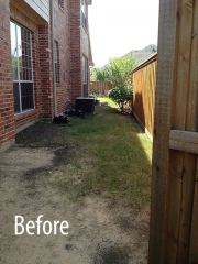 Before - Side Yard