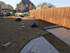Before - Landscaping