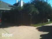 Bush Trimming & Fence Repair